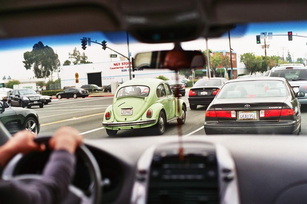 green_beetle
