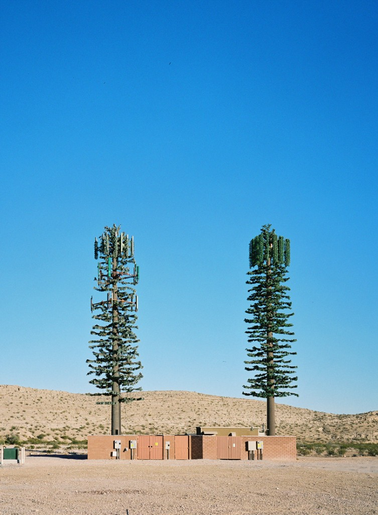 Tree Cell Towers