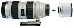 Canon 70-200 f/2.8L IS with 2x Converter